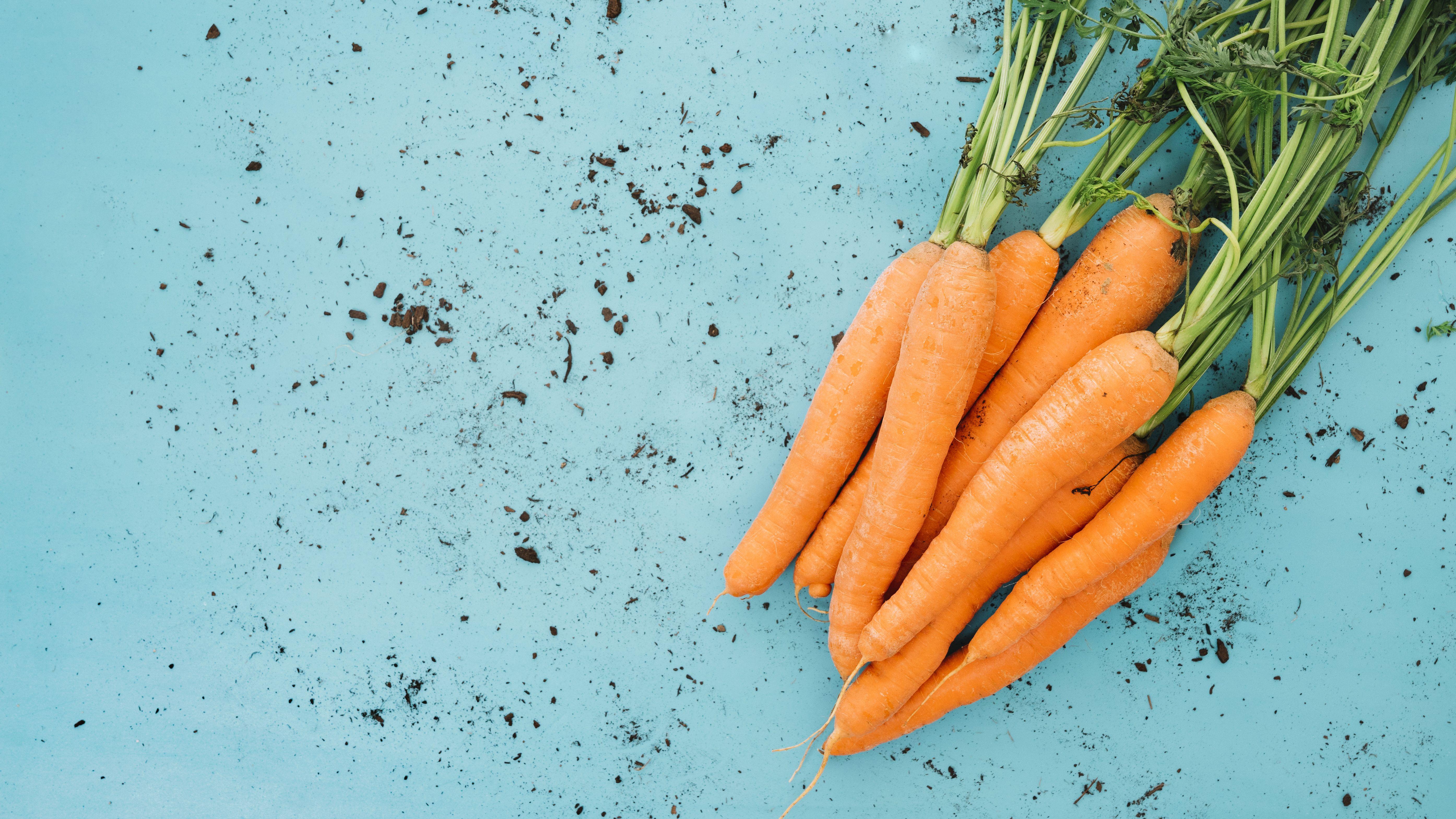 Для приготування маски натріть невелику моркву на терці і змішайте із сирим  жовтком. Нанесіть на шкіру на 10 хв і змийте теплою водою. 99727795f1448