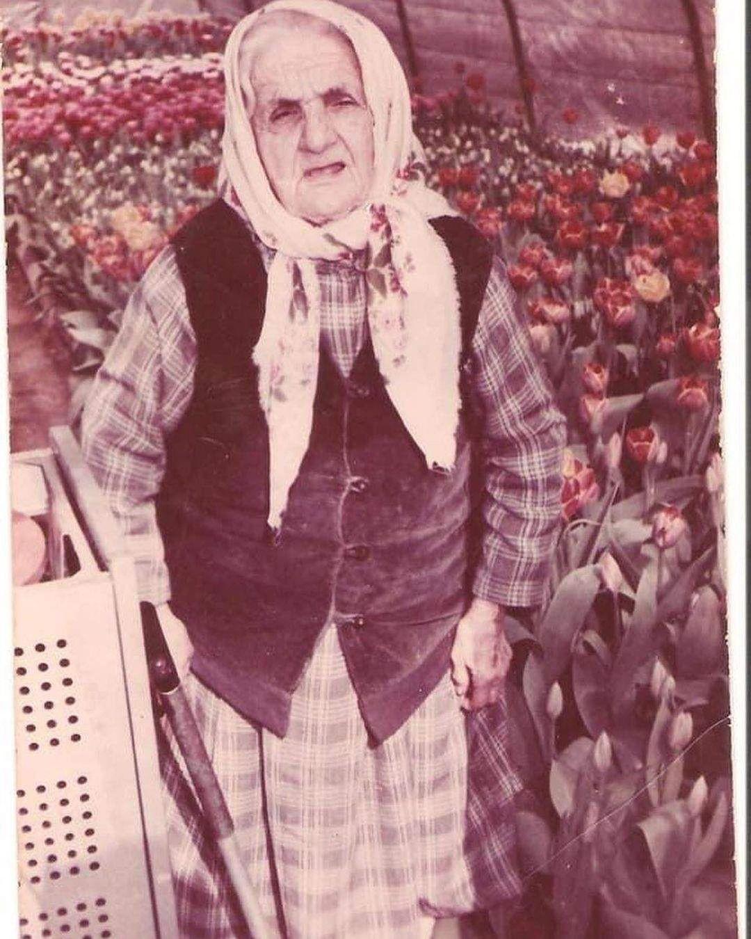 Джамала бабуся
