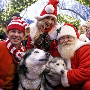 Дмитро Комаров розповів, де в Україні влаштовують карнавали на Старий Новий рік