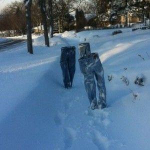 Снігопад століття: як у світі реагують  на негоду (ВІДЕО)