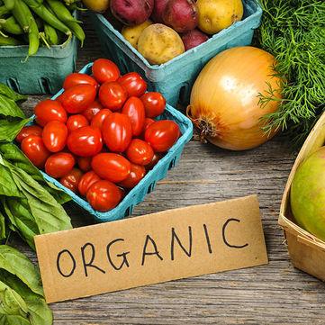 Чим еко-продукти відрізнаються від органічних? (відео)