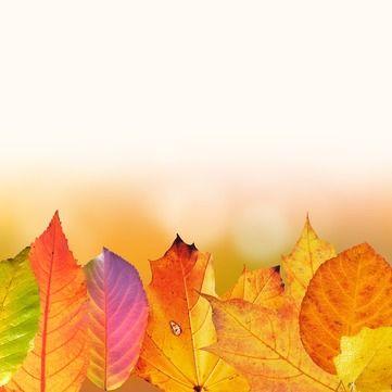 Топ порад, як попередити застуду восени