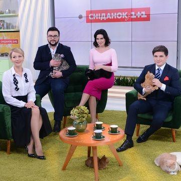 «Сніданок з 1+1» у прямому ефірі проведе благодійний аукціон присвячений безпритульним тваринам