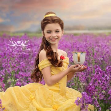 7-річна дівчинка в костюмах принцес Disney сколихнула мережу (фото)