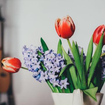 День весняного рівнодення: Чого не можна робити сьогодні