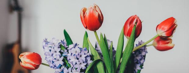 День весняного рівнодення: Астрологи прогнозують час змін