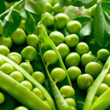 Сезон зеленого горошку: прості рецепти смачних страв