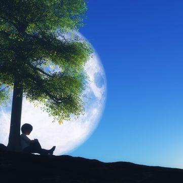 Місячний календар на тиждень з 17 до 23 липня