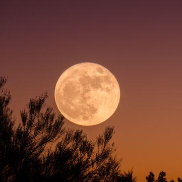 Місячний календар на тиждень з 7 до 13 серпня