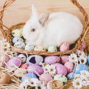 Пасха, Паска чи Великдень? 5 помилок в українській мові, яких соромно припускатися