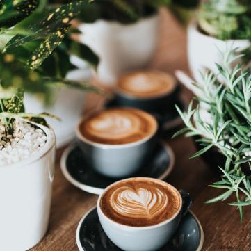 Кава vs вода: З чого починати ранок