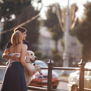 Як підготувати улюбленця до подорожі: Поради ветеринара
