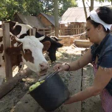 на фото жінка поїть корову в проекті Міняю Жінку