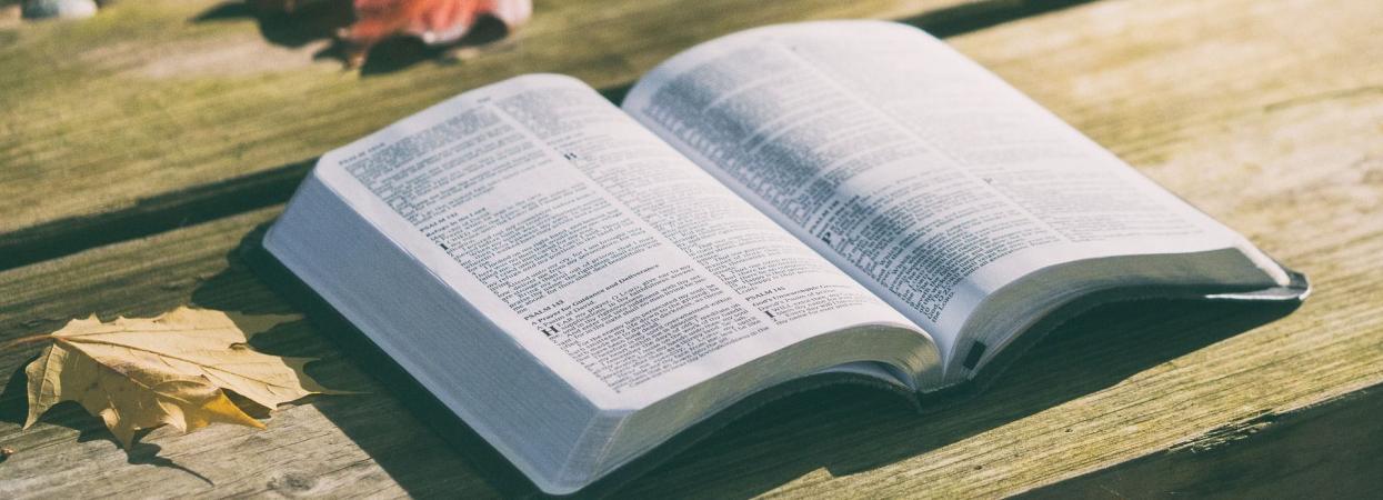 на фото Біблія на столі з опалим листям