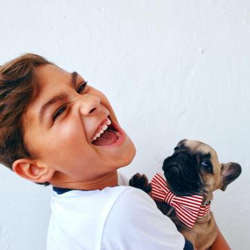 Хлопчик, собака, Цифра дня