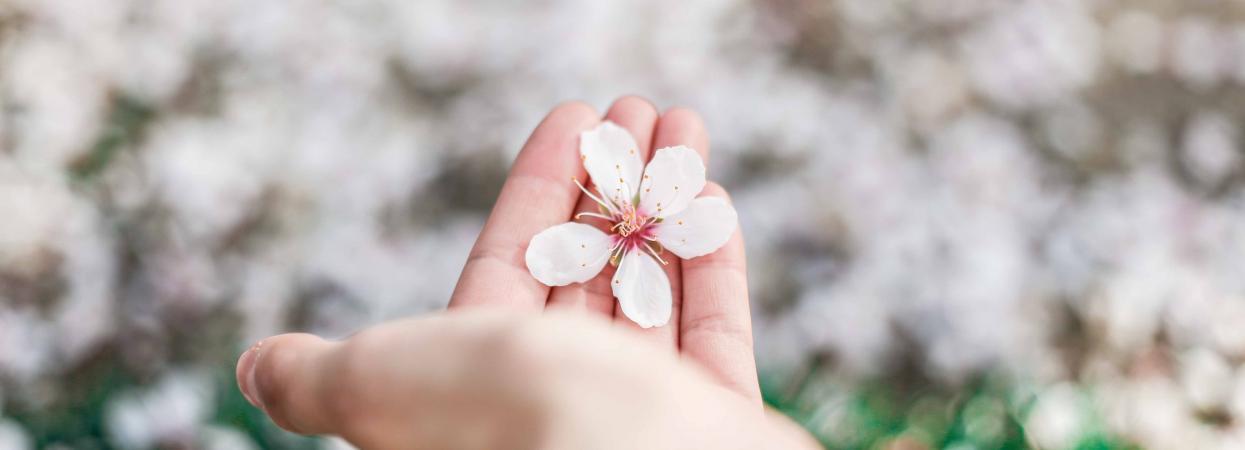 Весна, цифра дня