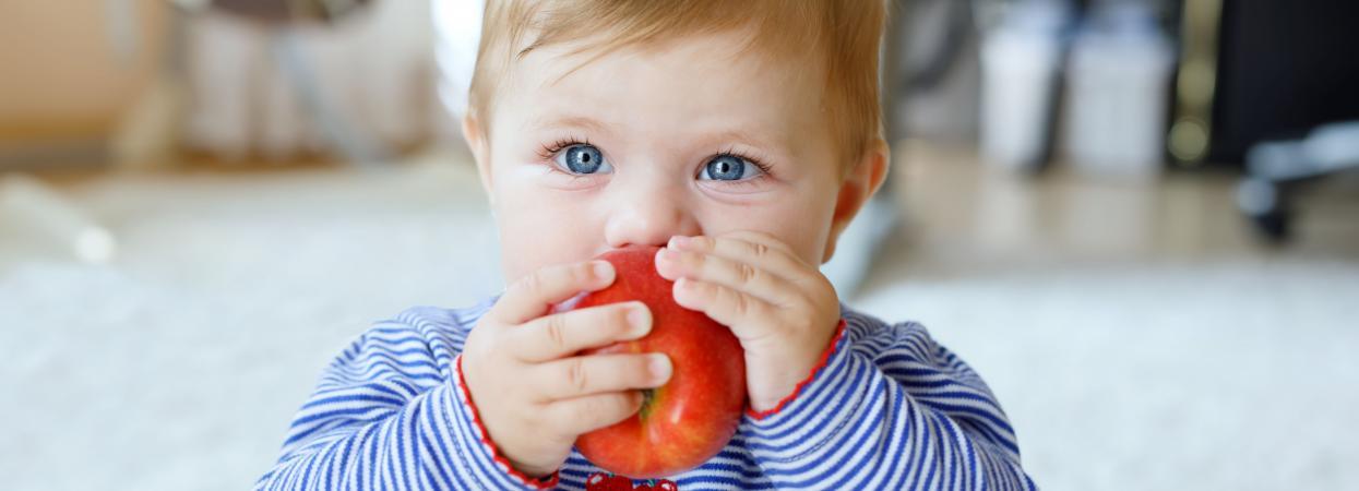 ребенок кушает яблоко