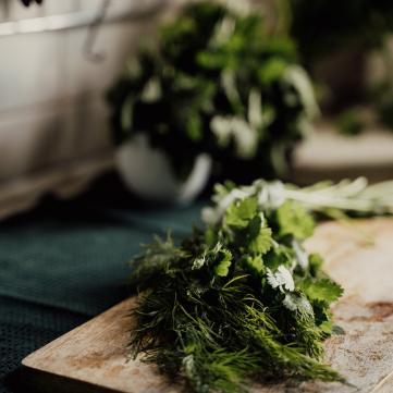 способы заготовки зелени на зиму