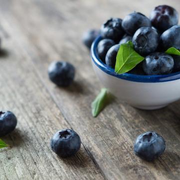 как правильно заготовить фрукты и выбрать саженцы голубики