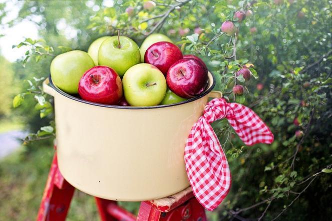 що не можна робити на яблучний Спас